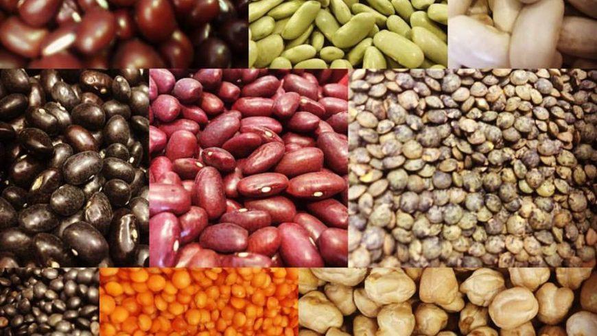 Esta semana -10% en todas nuestras legumbres.